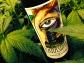 Cannabis-Absinthe-007